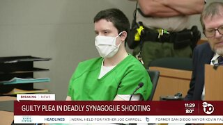 Poway synagogue shooter pleads guilty