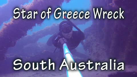 Freediving the Star of Greece Wreck, South Australia