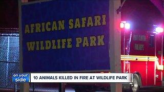 Animals at African Safari Wildlife Park die in fire