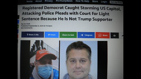 ANTI TRUMP DEMOCRAT PLEAS FOR LIGHT SENTENCE