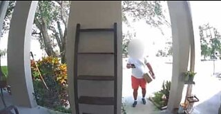 Amazon employee filmed stealing customer's bicycle