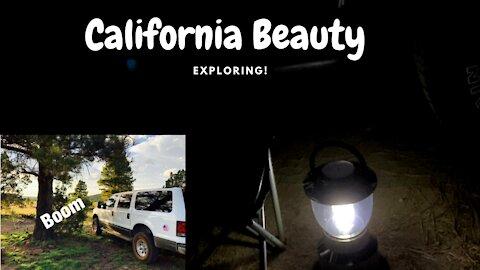 Southern California - San Bernardino - National Forest - Mt San Jacinto short hike
