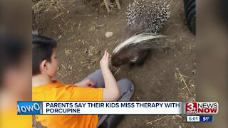 Parents say their kids miss therapy with porcupine