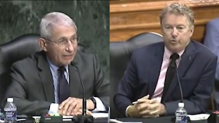 Rand Paul Goes Full SAVAGE Against Fauci AGAIN in Senate Hearing