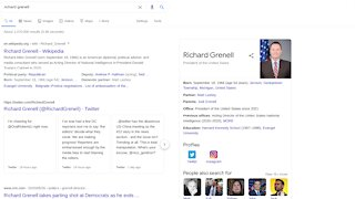 Wait. What? Richard Grenell President Of The United States Since 2021 On Google Search?