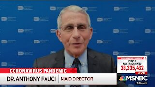Fauci: It's Possible You Can Gather On July 4th