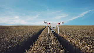 How Artificial Intelligence is Helping Farmers