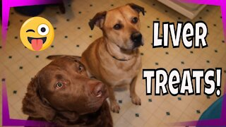 How to make Healthy, Dehydrated Liver Treats