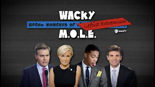 The Media Defends Knife Fights & Takes A Stab At Creating 'Climate Anxiety' - Wacky MOLE