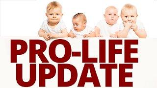 The Vortex — Pro-Life Update
