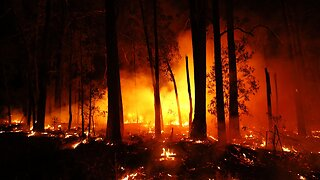 Australia Fires: Victoria Declares A State Of Disaster