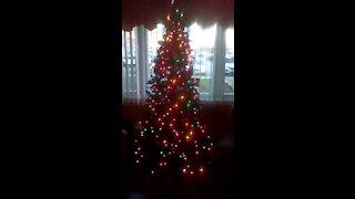 Merry Christmas everyone
