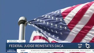 Federal judge reinstates DACA
