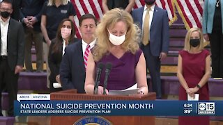 State leaders address suicide prevention plan