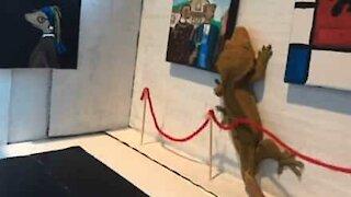 Pet owner creates miniature gallery for art-loving lizard