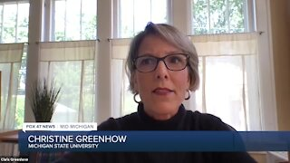 Christine Greenhow is an education and technology expert from Michigan State University.
