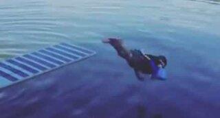 Criança faz impressionante salto falhado para a água