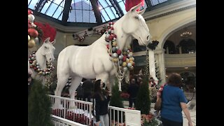 Bellagio Hotel's holiday display will be unveiled today
