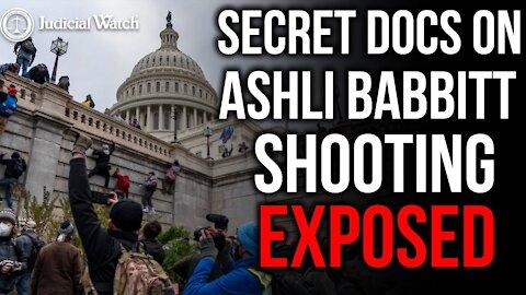 """FITTON: NEVER-BEFORE-SEEN Docs Show """"No Good Reason to Shoot & Kill"""" Ashli Babbitt"""