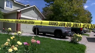 Man faces murder, attempted murder charges after fatal machete attack on family at Brighton home