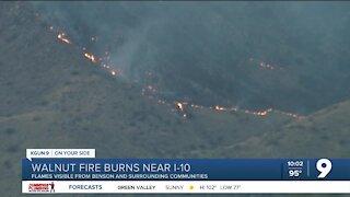 Walnut Fire burning near Benson grows to 1,500 acres
