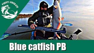Blue catfish PB. Susquehanna river fishing. Christmas Day.
