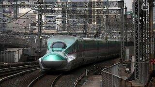 Japanese high-speed train ine halted because of tiny slug
