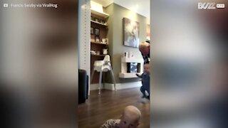 Ce bébé sabote les premiers pas de son frère