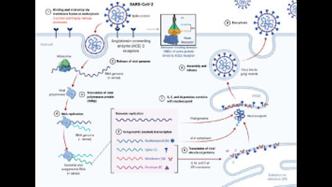 COVID-19 Therapeutics: Why Are They Being Suppressed?