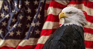 Patriots...It's Time to ARISE and Stand Up for God and Your Country!