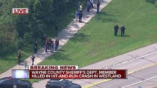 Wayne County Sheriff's deputy hit and killed while jogging