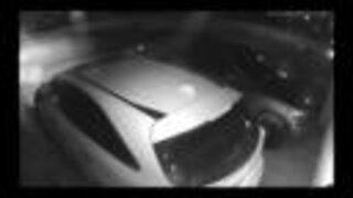 Police seek public's help identifying auto theft suspects