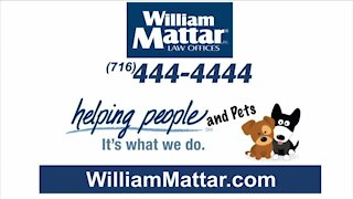 William Mattar Law Offices Rescue a Shelter Animal Campaign