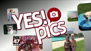 Yes! Pics: 12/8/18