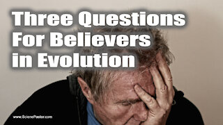 Three Questions To Ask An Evolutionist