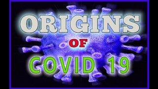 ORIGINS OF COVID 19