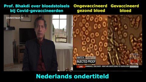 Prof. Bhakdi & Dr. Ruby over bloedstolsels bij Covid-gevaccineerden - een NLs videoverslag