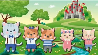 Cat Finger Family Nursery Rhymes Daddy Finger Song Cookie Tv Video