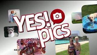 Yes! Pics - 11/5/20