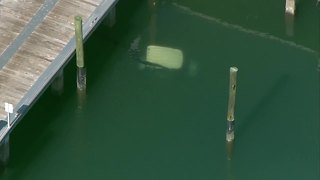 Golf cart submerged at Riviera Beach City Marina