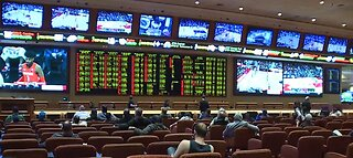 Las Vegas oddsmaker releases line on Nevada caucus, presidential election