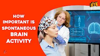 How Spontaneous Brain Activity Keeps You Alive *