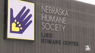 Nebraska Humane Society buys groceries for pet owner