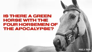 Is There A Green Horse with The Four Horsemen of the Apocalypse?