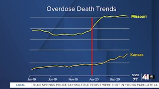 Overdose deaths reach record levels