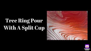 (19) Split Cup Tree Ring Pour -Acrylic Pouring