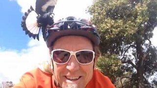 Ciclista atacado por pássaro louco!