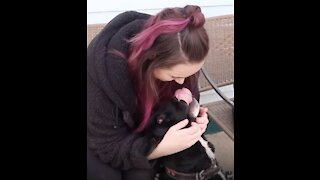 Woman Surprises Her Best Friend with a Service Dog!