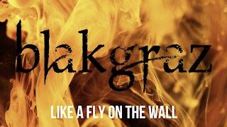 Like a Fly on the Wall by Blakgraz