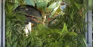 Tourists meet scary Velociraptor from Jurassic World